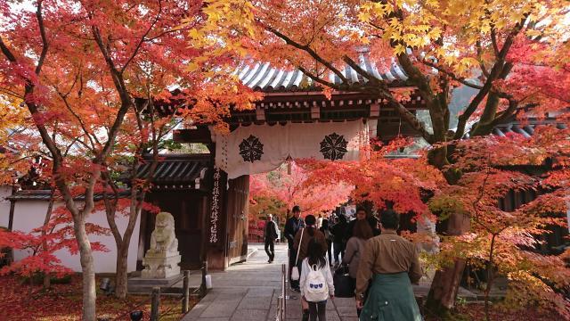 京都府禅林寺(永観堂)の山門