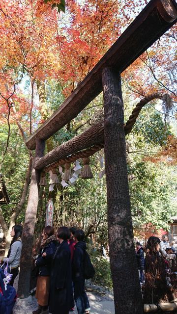 京都府野宮神社の鳥居