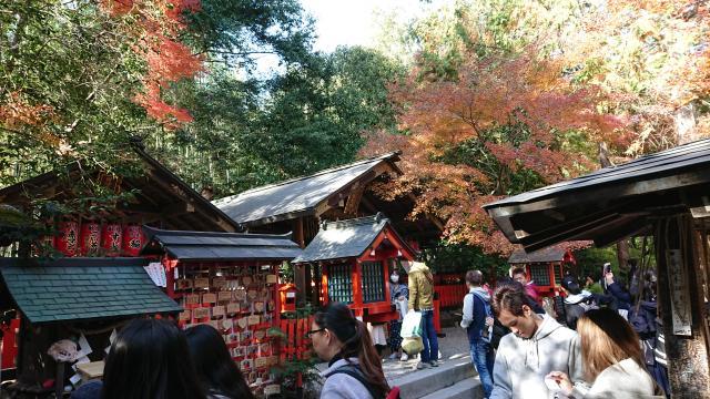 京都府野宮神社の本殿