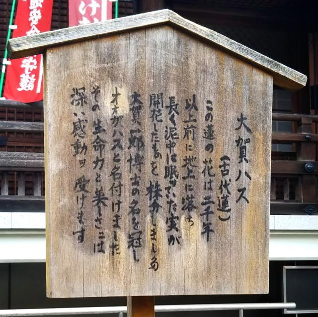 輪王寺(東京都鶯谷駅) - その他建物の写真