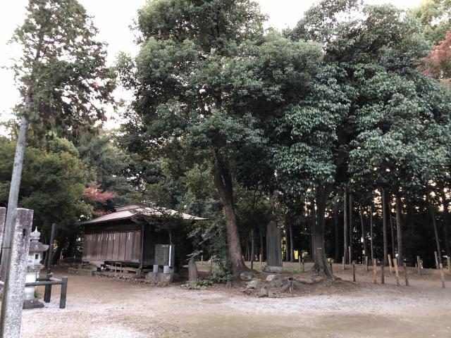 出雲伊波比神社の建物その他