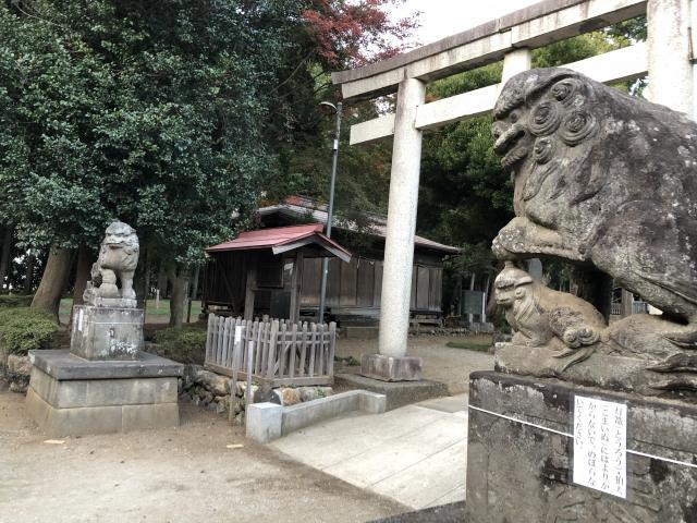 出雲伊波比神社の狛犬