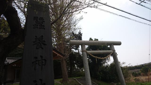 蠶養神社(茨城県十王駅) - 鳥居の写真