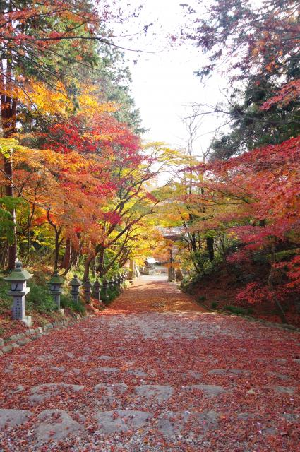 胡宮神社の写真