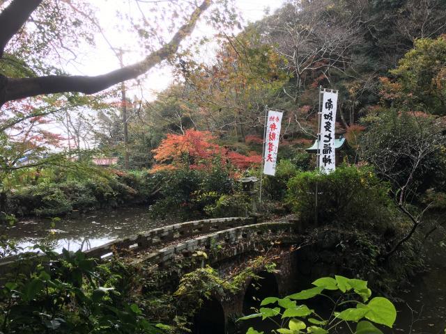 愛知県井際山 持宝院の庭園