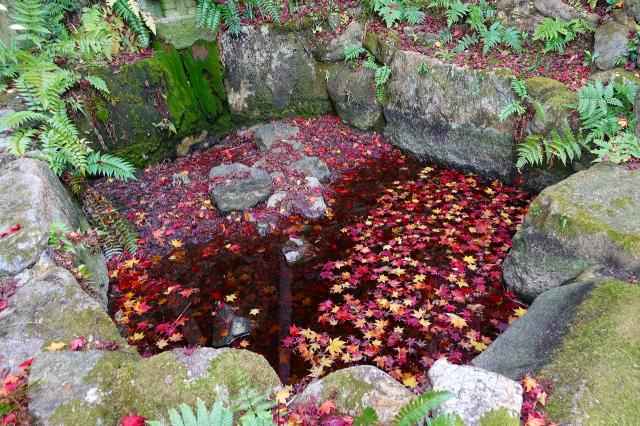 野仏庵の庭園