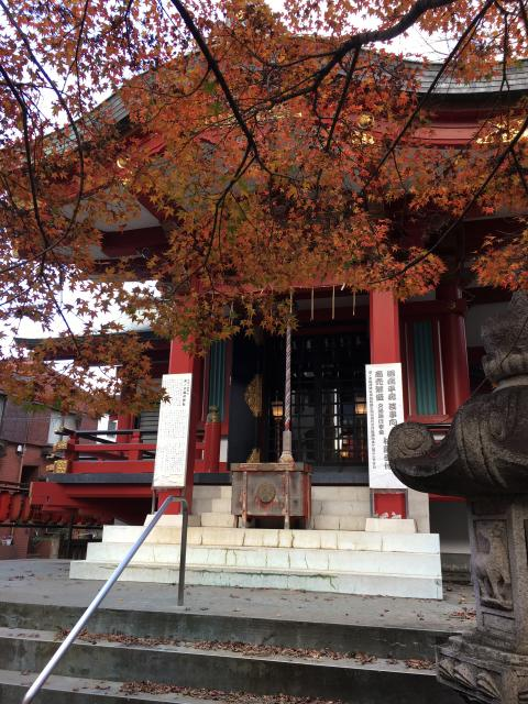 市谷亀岡八幡宮(東京都市ケ谷駅) - 本殿・本堂の写真