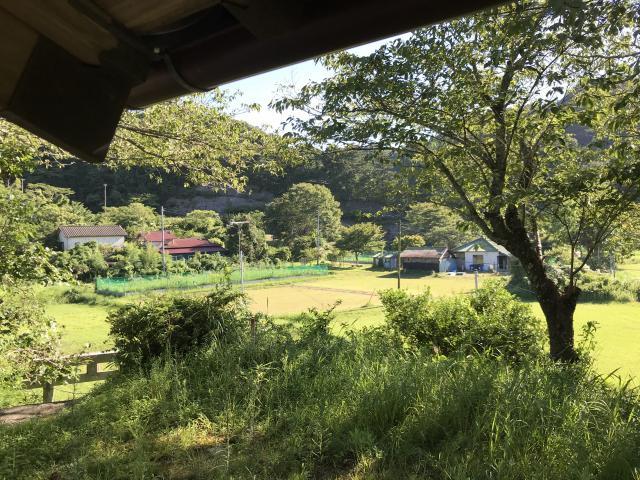 千葉県猿田彦神社の景色