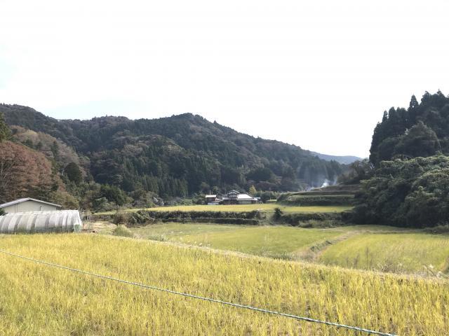 賀茂神社の周辺