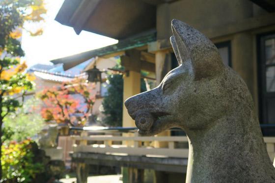 東京都熱田神社の狛犬