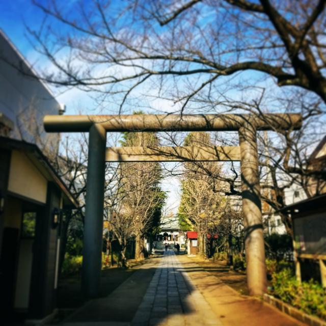 亀戸香取神社(東京都東あずま駅) - 未分類の写真